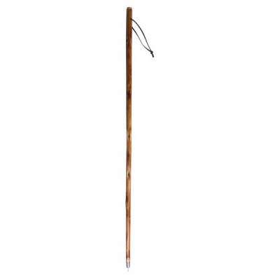 CAO Bâton de marche bois
